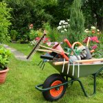 Der fleißige Gärtner