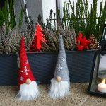 Frohe Weihnachten und ein gutes Neues Gartenjahr 2021