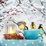 Ihr Garten im Winter